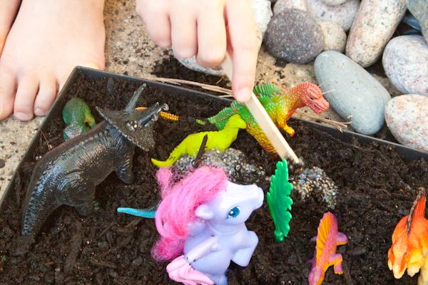 Grow a Magical Fairy Garden in Under a Week!