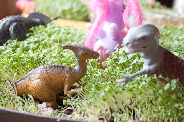 Gnome In Garden: 15 Creative, Kid-Friendly Garden Ideas