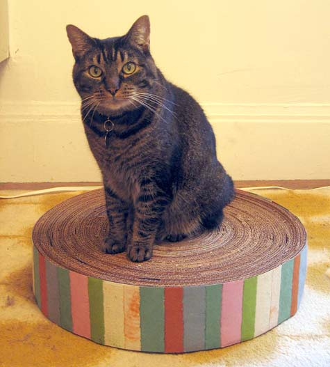 5 DIY Gifts for Cats, Because Cats Are People Too