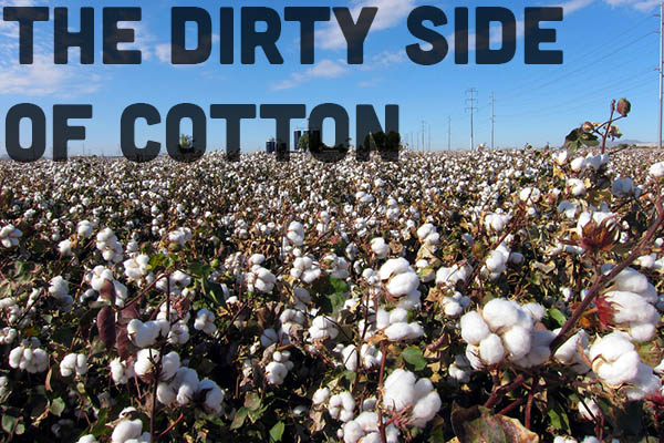 """Cotton: The Dirty Truth about """"The Fabric of our Lives"""""""