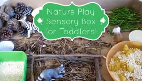 Rainy Day Activities: Nature Play Box