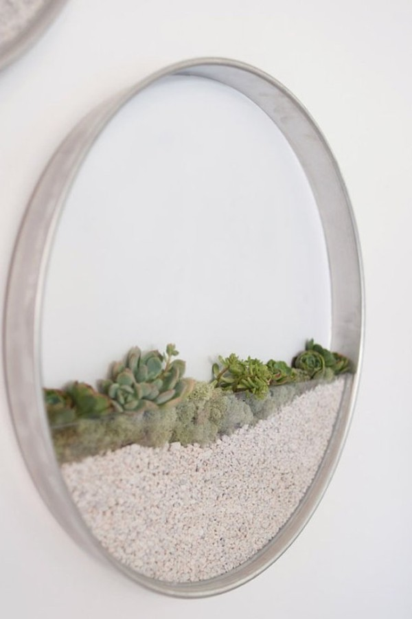 DIY Terrariums: Kim Fisher