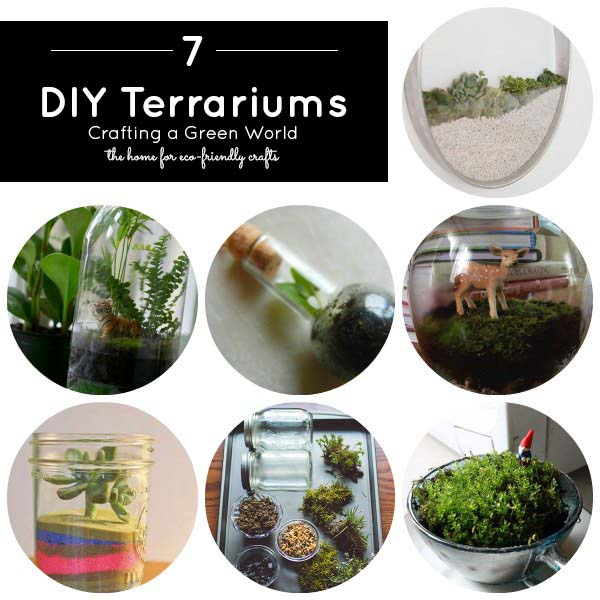 Sweet, Simple, DIY Terrariums