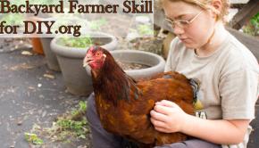 Kids Level up Skills at DIY.org