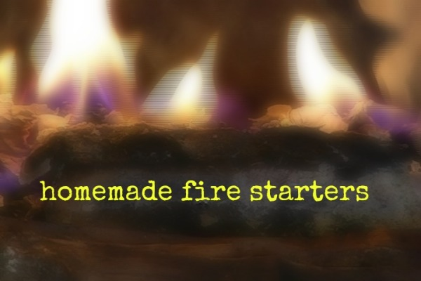 Make Homemade Fire Starters with Dryer Lint