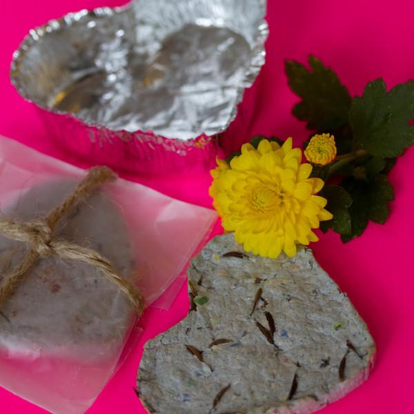 Valentine's Day Nature Crafts