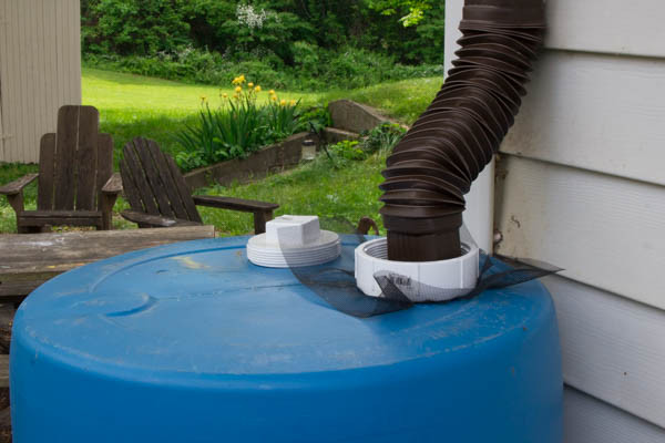 Check out my rain barrel! Even though rain barrels are pretty much all the same concept, each one tends to be put together in its own way. This is my rain barrel. There are many others like it, but this one is mine. Here's how I built it!