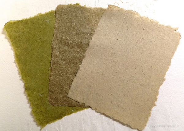 Invasive Paper Project via Megan Heeres for invasive plants