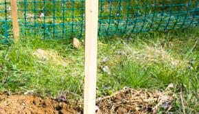 Hamilton Rise Up Pallet Board Garden Sign