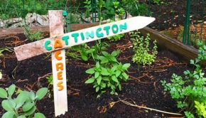 I made this DIY garden sign for a friend, and it was so much fun that I made another one. And another!