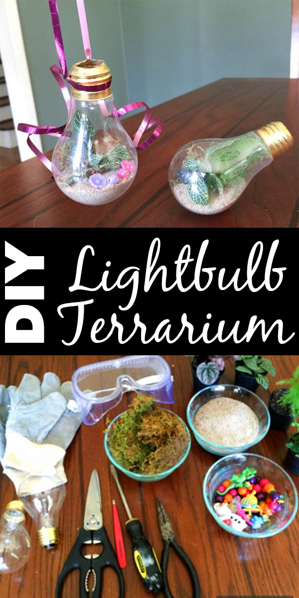 Are you ditching incandescents this year? Save those old bulbs and make yourself a cute lightbulb terrarium!
