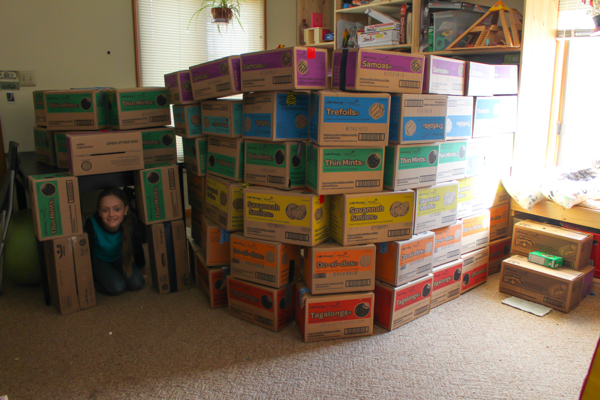 Here are some crafty ways to reuse Girl Scout Cookie Cases and other packing boxes!